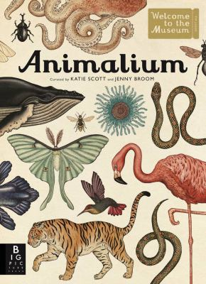 Animalium / illustrated [curated] by Katie Scott ; written by Jenny Broom.